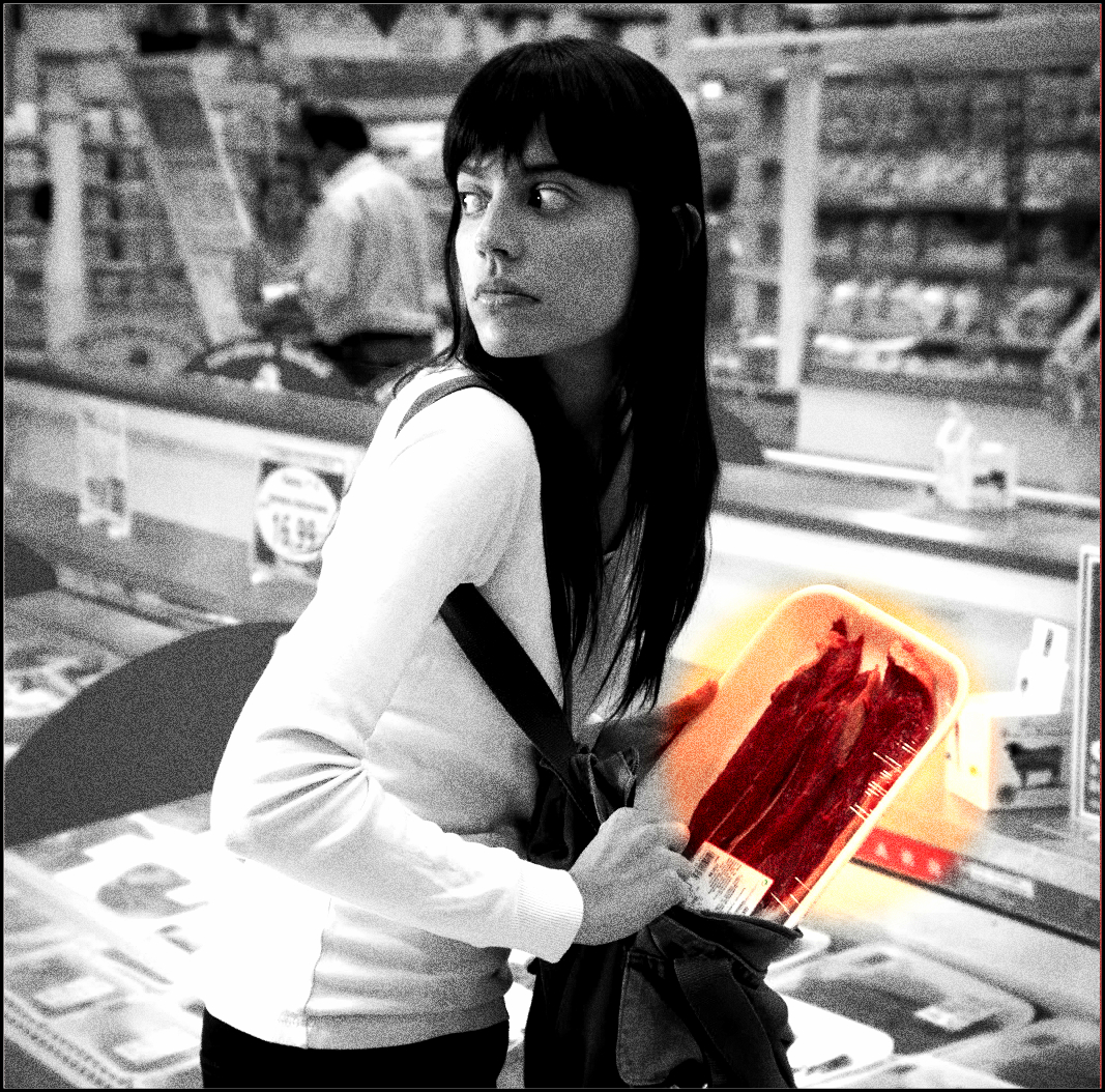 The Darkly Beautiful Art of Shoplifting « A Buick in the